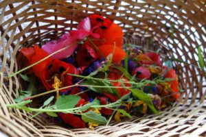 Summer flowers in basket